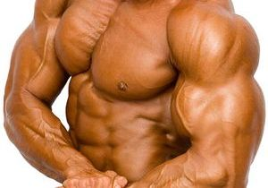 Steroids for muscle gains